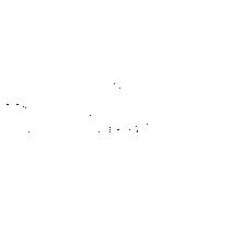 05 – trussardi